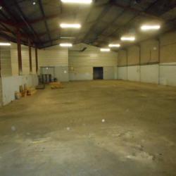 Location Local d'activités Aucamville 600 m²