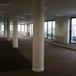 Location Bureau Asnières-sur-Seine 528 m²