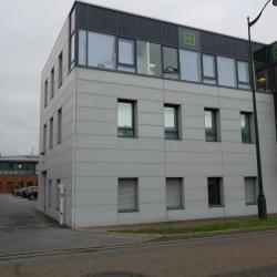 Location Local d'activités Carrières-sur-Seine 295 m²