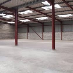 Location Local d'activités Le Haillan 900 m²