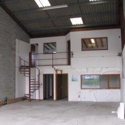 Location Local d'activités Saint-Martin-de-Seignanx 160 m²