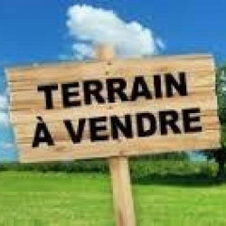 Vente Terrain Montbouy 0 m²