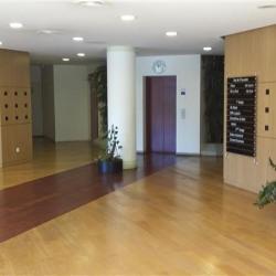 Location Bureau Saint-Thibault-des-Vignes 216 m²