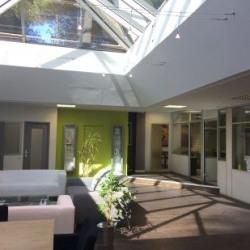 Location Bureau Villeneuve-Loubet 390 m²