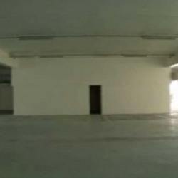 Location Local d'activités Ivry-sur-Seine 1045 m²