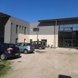 Vente Local d'activités Pernes-les-Fontaines 672 m²