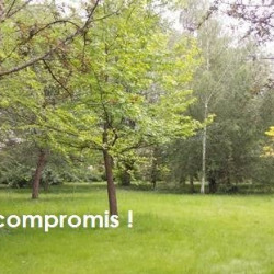 Vente Terrain Les Essarts-le-Roi 1189 m²