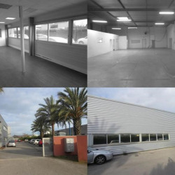 Location Local d'activités Pérols 400 m²