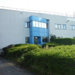 Vente Local d'activités Brécé 3787 m²