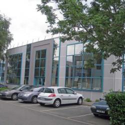Location Bureau Villeneuve-d'Ascq 125 m²