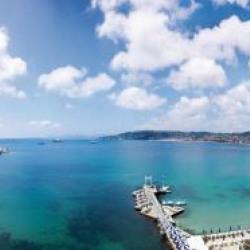 Vente Terrain Cannes 750 m²