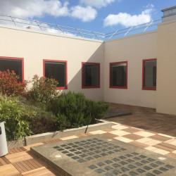 Location Local d'activités Gennevilliers 823 m²