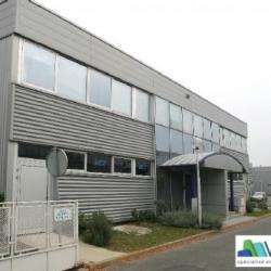 Location Local d'activités Bonneuil-sur-Marne 519 m²
