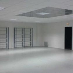 Location Local d'activités Lisses 525 m²