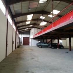 Vente Entrepôt Ozoir-la-Ferrière 915 m²