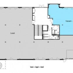 Location Bureau Lyon 7ème 171 m²
