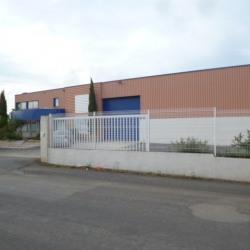 Location Local d'activités Bessan 375 m²