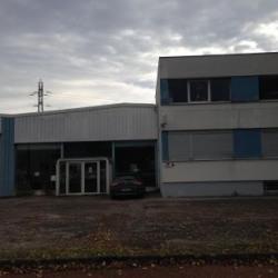 Location Local d'activités Dijon 720 m²
