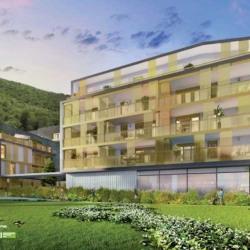 Vente Local commercial Saint-Martin-le-Vinoux 188 m²