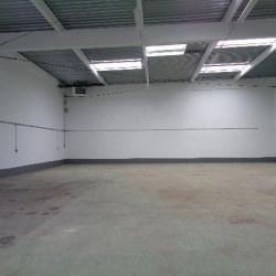 Location Local d'activités Villepinte 445 m²