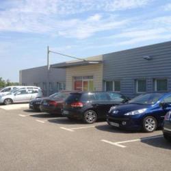 Vente Bureau Entraigues-sur-la-Sorgue 380 m²