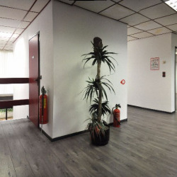 Location Bureau Canly 60 m²