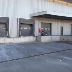 Vente Local d'activités Villejust 8192 m²