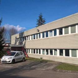 Vente Local d'activités Dourdan 2770 m²