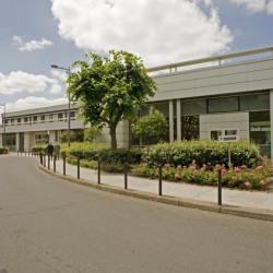 Location Local d'activités Colombes 730 m²