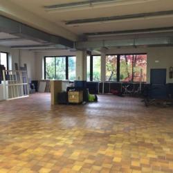 Vente Local d'activités Clamart 1311 m²