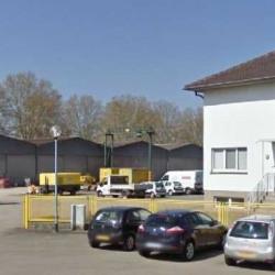 Location Local d'activités Illkirch-Graffenstaden 2540 m²