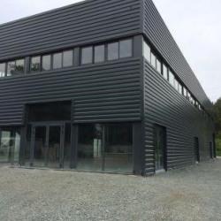 Location Local d'activités Parempuyre 650 m²