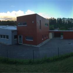 Vente Bureau Saint-Nazaire-les-Eymes 580 m²