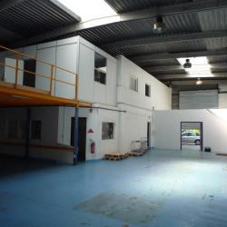 Location Local d'activités Noisy-le-Grand 387 m²