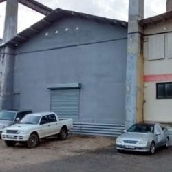 Location Local d'activités Albigny-sur-Saône (69250)
