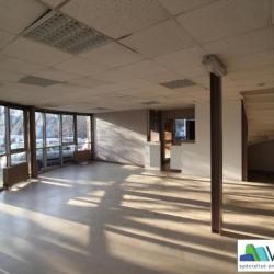 Location Local d'activités Fontenay-sous-Bois 1311 m²