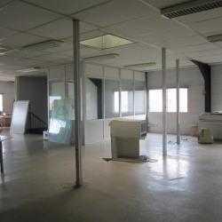 Vente Bureau Ramonville-Saint-Agne 1200 m²