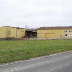 Location Local d'activités Vaux-sur-Blaise 968 m²