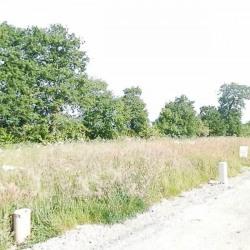 Vente Terrain Bourg-des-Comptes 307 m²