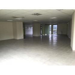 Location Local commercial Talence 535 m²