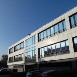 Vente Bureau Meylan 145 m²