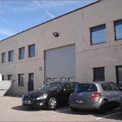 Location Local d'activités Chassieu 405 m²