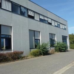Location Local d'activités Labège 675 m²