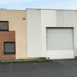 Vente Local d'activités Noisiel 325 m²