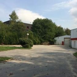 Location Local d'activités Goussainville 1025 m²