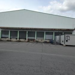 Vente Local d'activités Vern-sur-Seiche 10195 m²