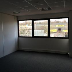 Location Local d'activités Le Blanc-Mesnil 612 m²