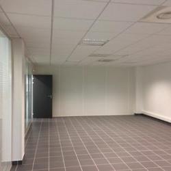Location Entrepôt Saint-Quentin-Fallavier 18700 m²