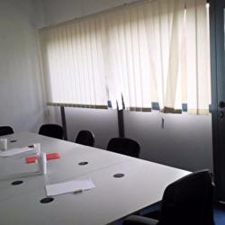 Location Bureau Toulouse 150 m²