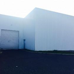 Vente Local d'activités Rillieux-la-Pape 923 m²